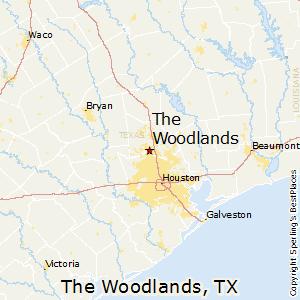 The Woodlands TX realtor