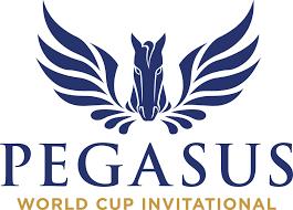 Pegasus cup betting